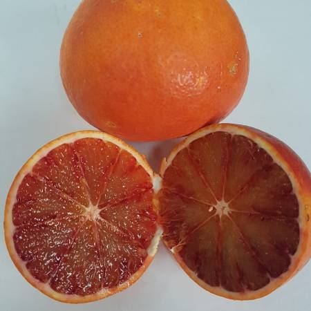 tarocco-rosso-aranciadrink.jpg AranciaDrink